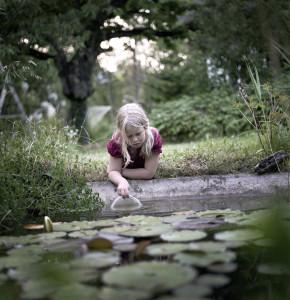 Riitta Järvelä: Sarjasta Kasvaminen